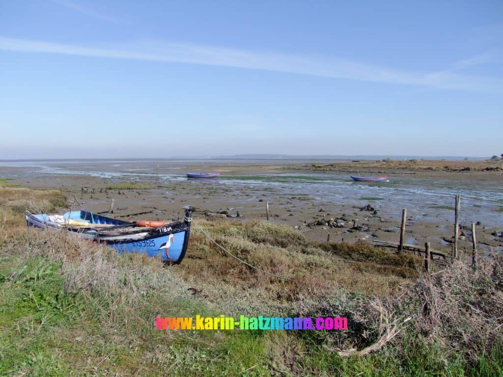 colorful fisherboats sitting on dry land at low tide, waiting for the tide to turn
